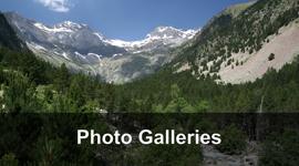 Photo-Galleries